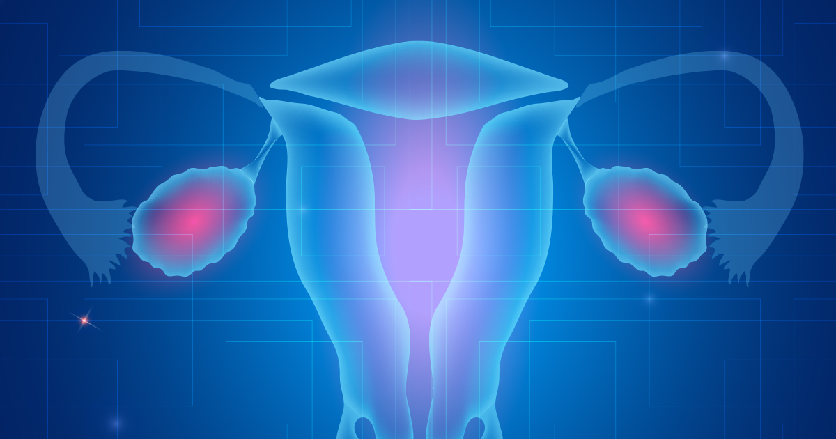 Illustration of fallopian tubes