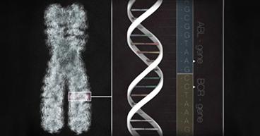 Genetic-Test