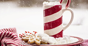 Healhty holidays banner